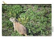 Nebraska Prairie Dog Carry-all Pouch