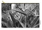 Nepenthe Bird Of Paradise B And W Carry-all Pouch
