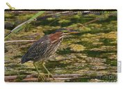Nervous Green Heron Carry-all Pouch