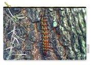New Orleans Buck Moth Caterpillar Carry-all Pouch