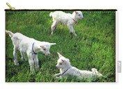 Newborn Goats Carry-all Pouch