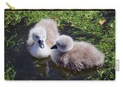 Newly Hatched Cygnets At Abbotsbury Carry-all Pouch