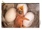 Newly Hatched Tree Swallow Carry-all Pouch