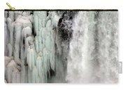 Niagara Falls 5 Carry-all Pouch
