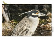 Night Heron Standing On A Rock In Key West Carry-all Pouch