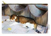 Nine Lives Carry-all Pouch by Debbi Granruth