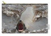 Noisy Sea Lion Carry-all Pouch
