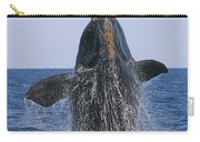 North Atlantic Right Whale Breaching Carry-all Pouch by Tony Beck