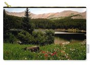 North Fork  Lake Colorado Carry-all Pouch
