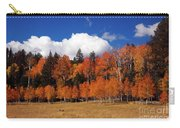 North Rim Autumn Carry-all Pouch