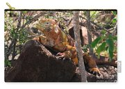North Seymour Island Iguana In The Galapagos Islands Carry-all Pouch