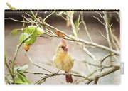 Northern Cardinal Female - Digital Painting Carry-all Pouch