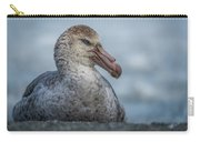 Northern Giant Petrel Sitting On Sandy Beach Carry-all Pouch