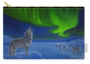 Northern Lights Night Carry-all Pouch