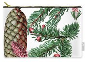 Norway Spruce, Pinus Abies Carry-all Pouch