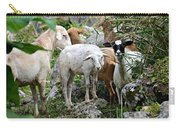 Nosy Sheep Carry-all Pouch