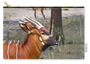 Nyala At The Watering Hole Carry-all Pouch