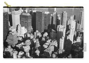 Nyc Bw Carry-all Pouch