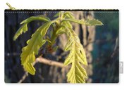 Oak Leaves In May Dawn Light Carry-all Pouch
