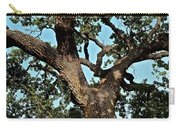 Oak Tree Two Carry-all Pouch