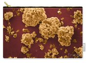 Oat Starch Grains Sem Carry-all Pouch