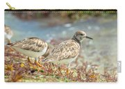 Ocean Plover Carry-all Pouch