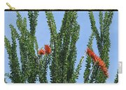 Ocotillo Plant  Carry-all Pouch
