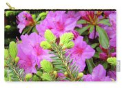 Office Art Pine Conifer Pink Azalea Flowers 38 Azaleas Giclee Art Prints Baslee Troutman Carry-all Pouch