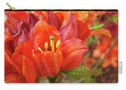 Office Art Prints Orange Azalea Flowers 20 Giclee Prints Baslee Troutman Carry-all Pouch