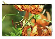 Office Art Prints Tiger Lilies Flowers Giclee Baslee Troutman Carry-all Pouch