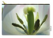 Office Art Tulip Flower Art Prints Tulips Giclee Baslee Troutman Carry-all Pouch