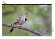 Oil Painted Northern Flicker Carry-all Pouch