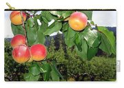 Okanagan Apricots Carry-all Pouch