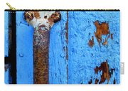 Old Door Photograph Carry-all Pouch