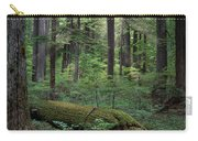 Old Growth Forest Carry-all Pouch