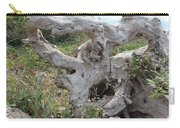 Old Stump At Gold Beach Oregon 1 Carry-all Pouch