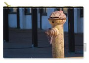 Old Time Hydrant Carry-all Pouch