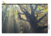 Old Tree And Sunbeams Carry-all Pouch