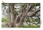 Old Weathered Tree Carry-all Pouch