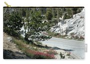 Olmsted Down The Road View Carry-all Pouch