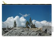 Olmsted Point Pine Rear View Carry-all Pouch