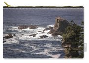 Olympic Peninsula Coastline Carry-all Pouch