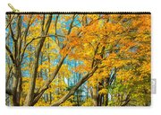 On A Country Road 5 - Paint Carry-all Pouch