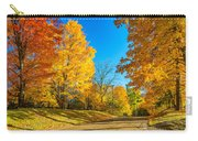 On A Country Road 6 Carry-all Pouch