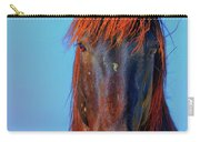 Onaqui Wild Stallion Portrait Carry-all Pouch