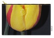 Once Again Spring Carry-all Pouch