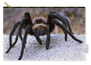 One Big Hairy Spider Carry-all Pouch