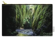 Oneonta Gorge Adventure Carry-all Pouch