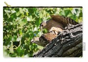 Cooper's Hawks Mating Carry-all Pouch