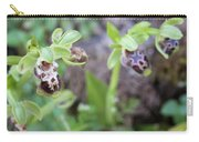 Ophrys Kotschyi Wild Orchid Plant. Carry-all Pouch